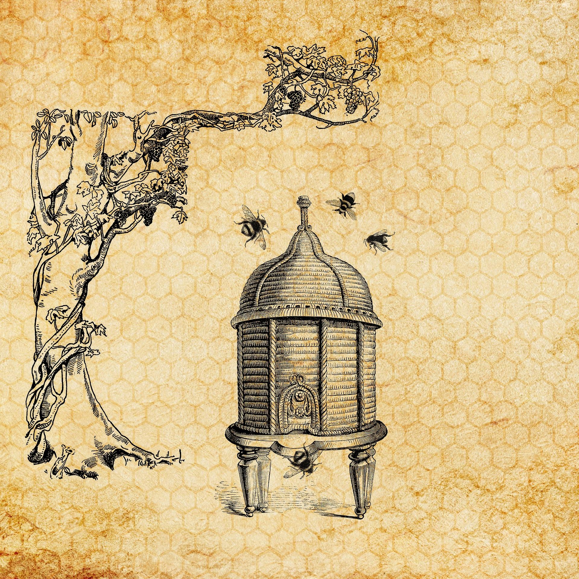 beehive-3434143_1920